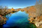 Ohau River in Late Autumn by Christine Smith