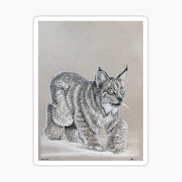 Canadian Lynx Sticker
