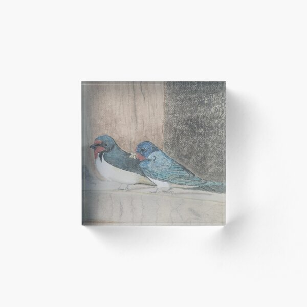 Swallows  Acrylic Block