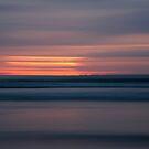 redbill beach. bicheno, tasmania by tim buckley   bodhiimages