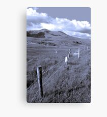 beautiful lush fields of ireland Canvas Print