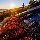 Above Bar Harbor by Chad Dutson