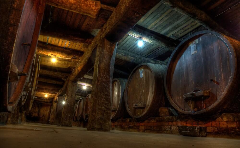 Winery Cellar by NBoersma