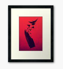 Bullet Birds Framed Print