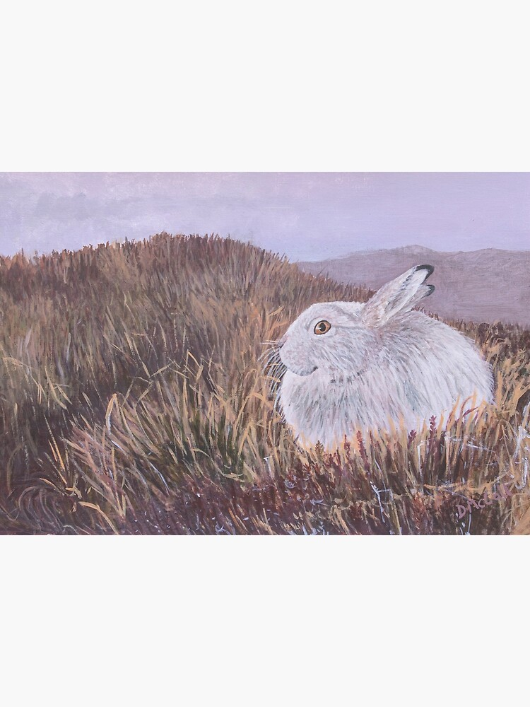 Mountain Hare by DawnsArt92