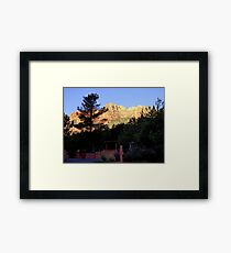 Canyon Pines Framed Print
