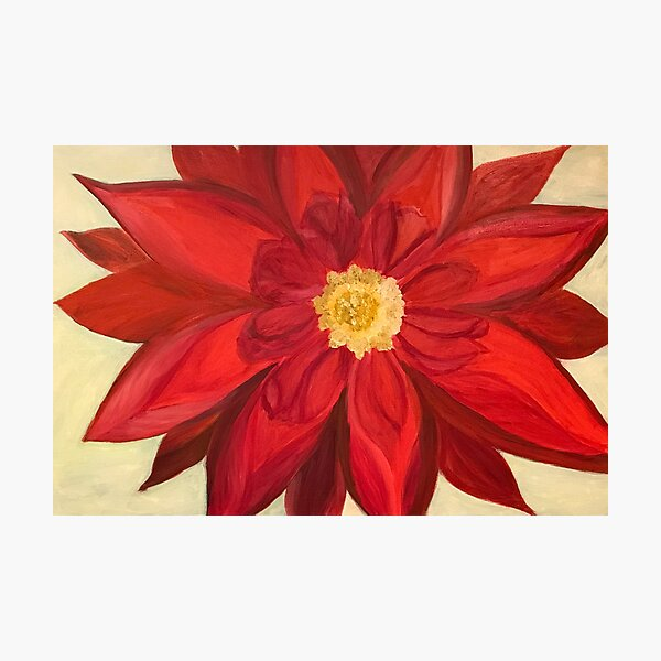 Red Dhalia - A Brightening Image Photographic Print