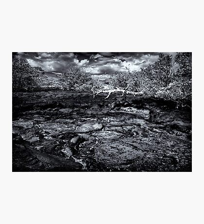 Time In Galapagos Photographic Print