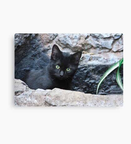 You Found Me! Canvas Print