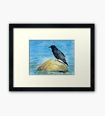Raven and Rock Framed Print