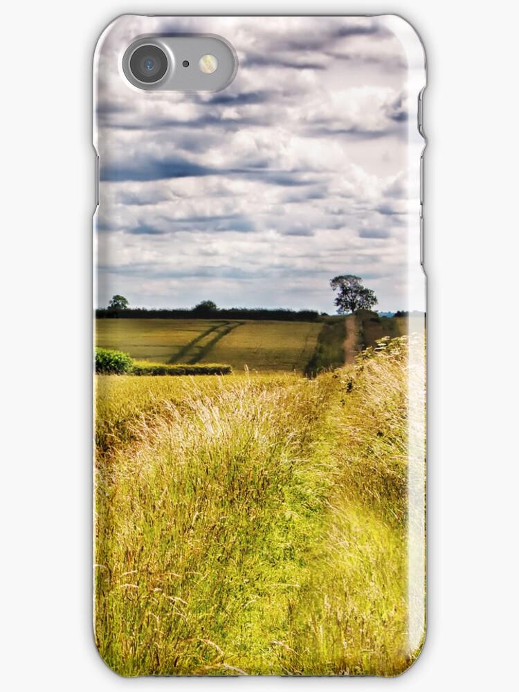 Across the fields by Vicki Field