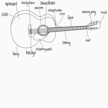 Guitar Anatomy by natedawg
