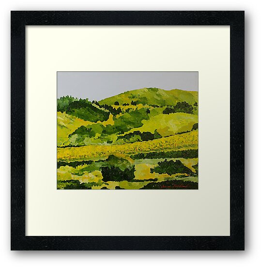 Vineyard in the Hills by Allan P Friedlander