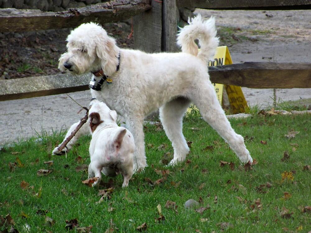 Give my stick back! I'm not kidding! by Choux