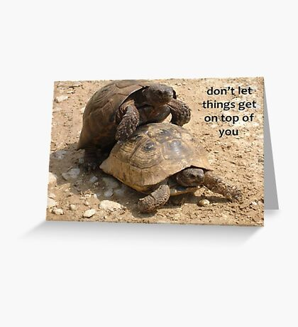 Don't Let things Get On Top of You  Greeting Card