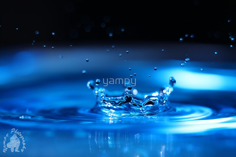 One Water Crown by yampy