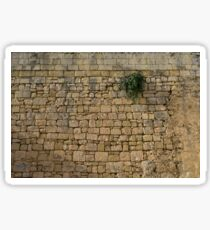Life on Bare Rock - Up High on the Fortification Wall Sticker