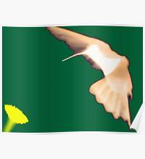 Hummingbird Abstract Poster