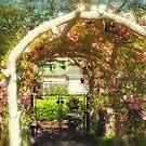 Secret Garden by Tracy Riddell