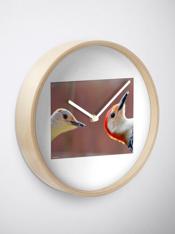 Alternate view of Femal and Male Red-Bellied Woodpeckers Clock