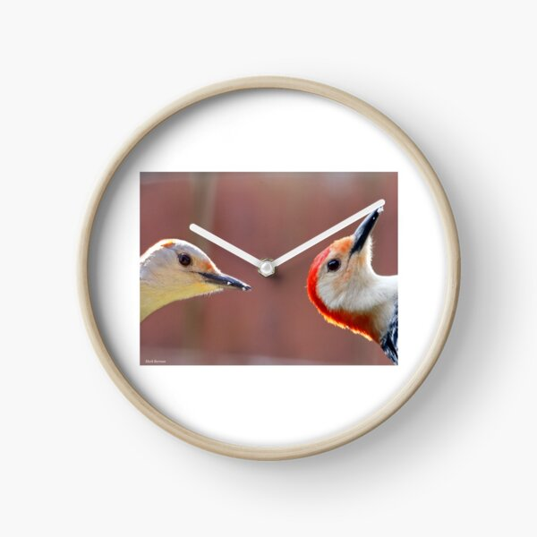 Femal and Male Red-Bellied Woodpeckers Clock
