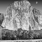 Moon over El Capitan, Yosemite National Park, California by Pete Paul