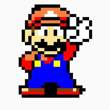 It's-a me! Mario! by surfking
