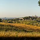 San Gimignano, panorama by Philip Teale