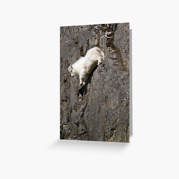 Wildlife Olympics - Tricky Dismount, Mountain Goat Kid Greeting Card