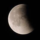 Lunar Eclipse by Coleen Gudbranson