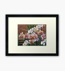 Gardens of the World - Orchids III Framed Print