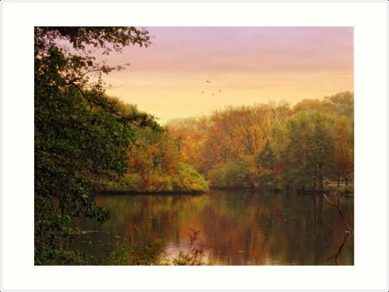 Placid Pond by Jessica Jenney
