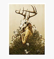 The Deer Secret Photographic Print