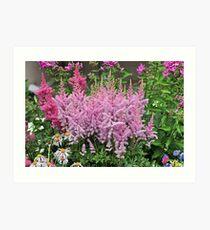 flowering plants Art Print
