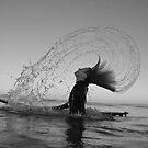 Beach life by Lionelbush