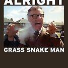 Alright Grass Snake Man? by Smallbrainfield
