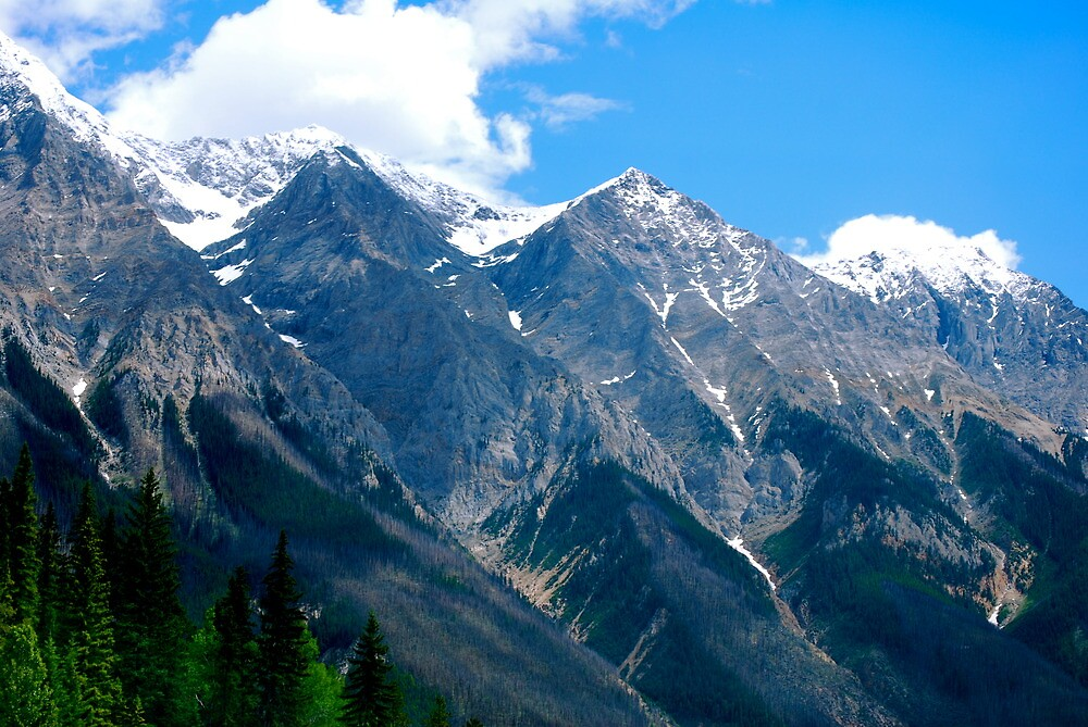 Mountain Magnificence by Carol Clifford