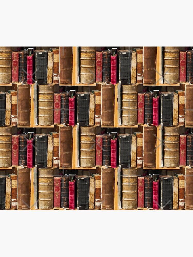 Bookworm Vintage books in bookshelf by UtArt