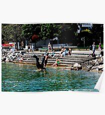 People enjoying the lake Poster