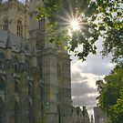 Westminster in the Afternoon by Barbara  Brown