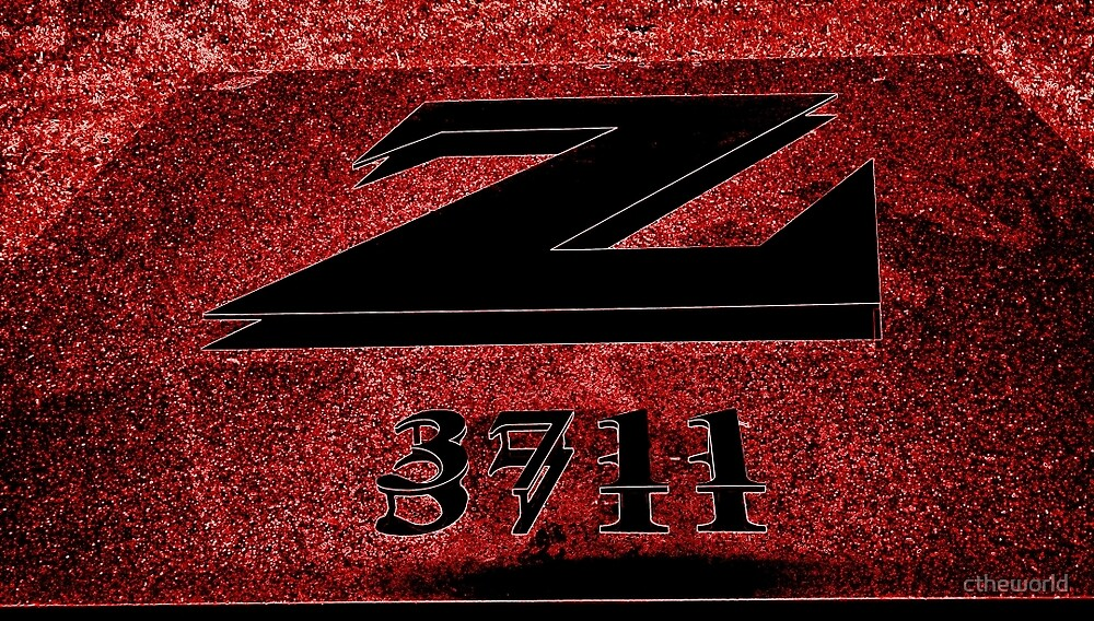 BIG Z   ^ by ctheworld