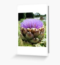 Allotment beauty. Greeting Card
