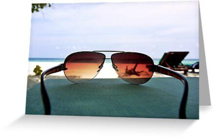 Tropical Viewpoint by Ryan Davison Crisp