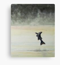 Morning Mist on the Miramichi with Salmon jumping Canvas Print