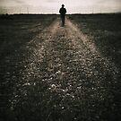 The desolate way by Nikki Smith (Brown)