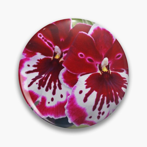 Orchids 2 Pin
