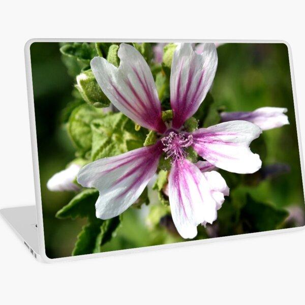 Zebra Mallow Flower Laptop Skin