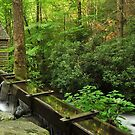 roaring fork tub mill by dc witmer