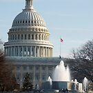 The U. S. Capitol > by John Schneider