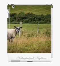Northumberland countryside iPad Case/Skin
